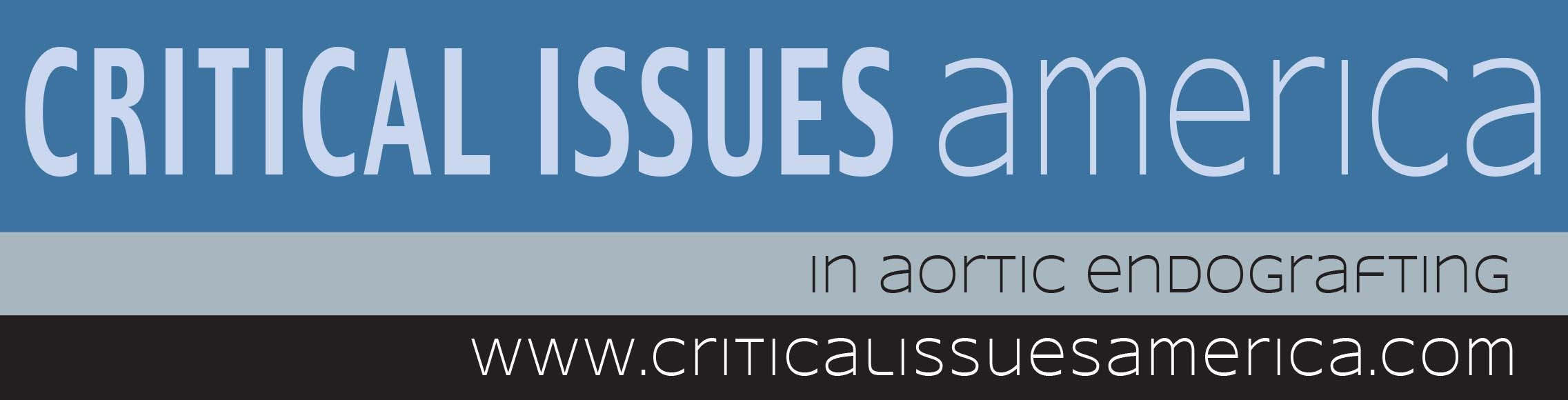 2019 Critical Issues America
