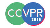 2018 International Joint Conference on Computer Vision and Pattern Recognition (CCVPR 2018)