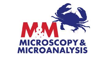 M&M 2018 Annual Meeting (Microscopy & Microanalysis)