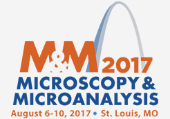 Microscopy & Microanalysis 2013 Meeting